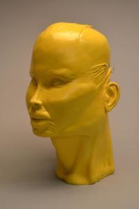 head yellow
